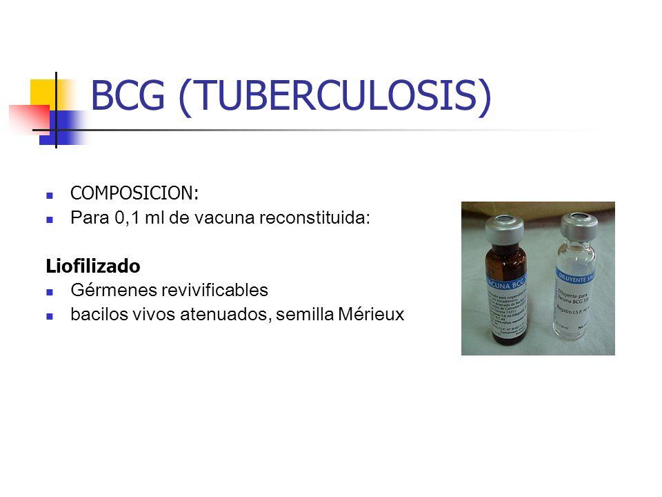 BCG (TUBERCULOSIS) COMPOSICION: Para 0,1 ml de vacuna reconstituida: Liofilizado Gérmenes revivificables bacilos vivos atenuados, semilla Mérieux