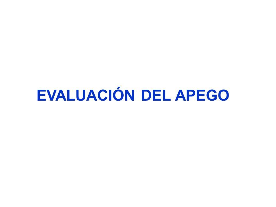 EVALUACIÓN DEL APEGO