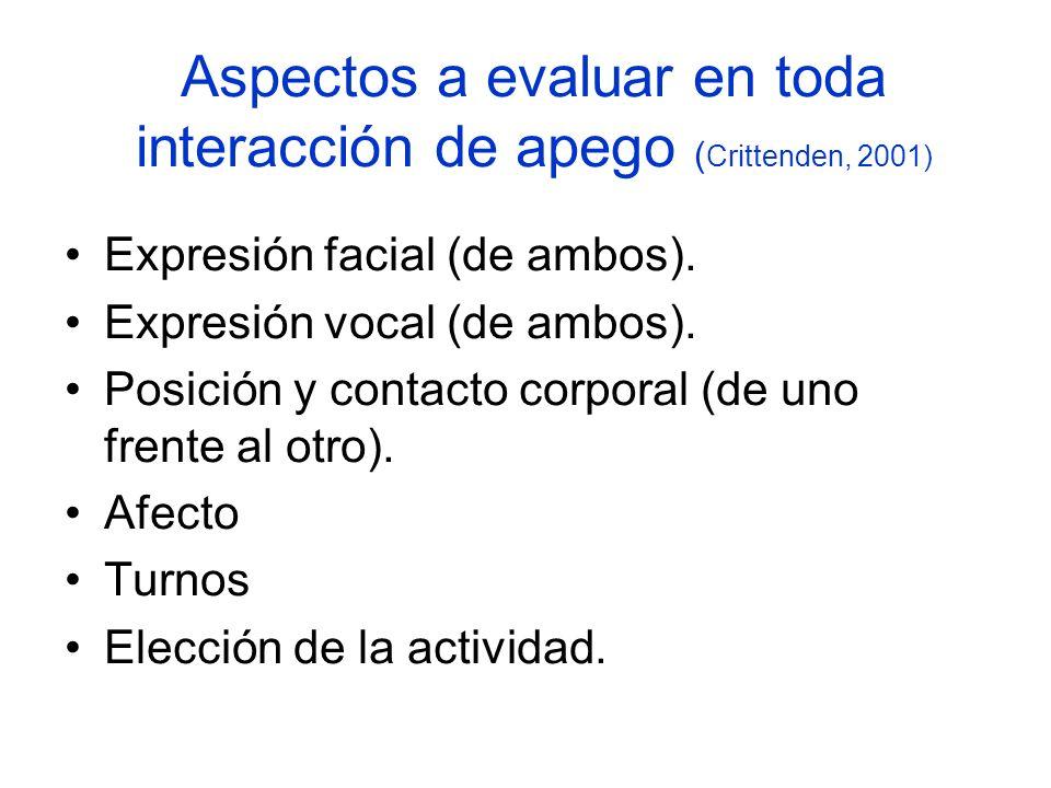 Aspectos a evaluar en toda interacción de apego ( Crittenden, 2001) Expresión facial (de ambos). Expresión vocal (de ambos). Posición y contacto corpo