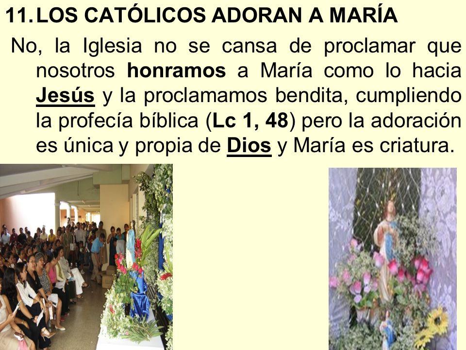 11.LOS CATÓLICOS ADORAN A MARÍA No, la Iglesia no se cansa de proclamar que nosotros honramos a María como lo hacia Jesús y la proclamamos bendita, cu