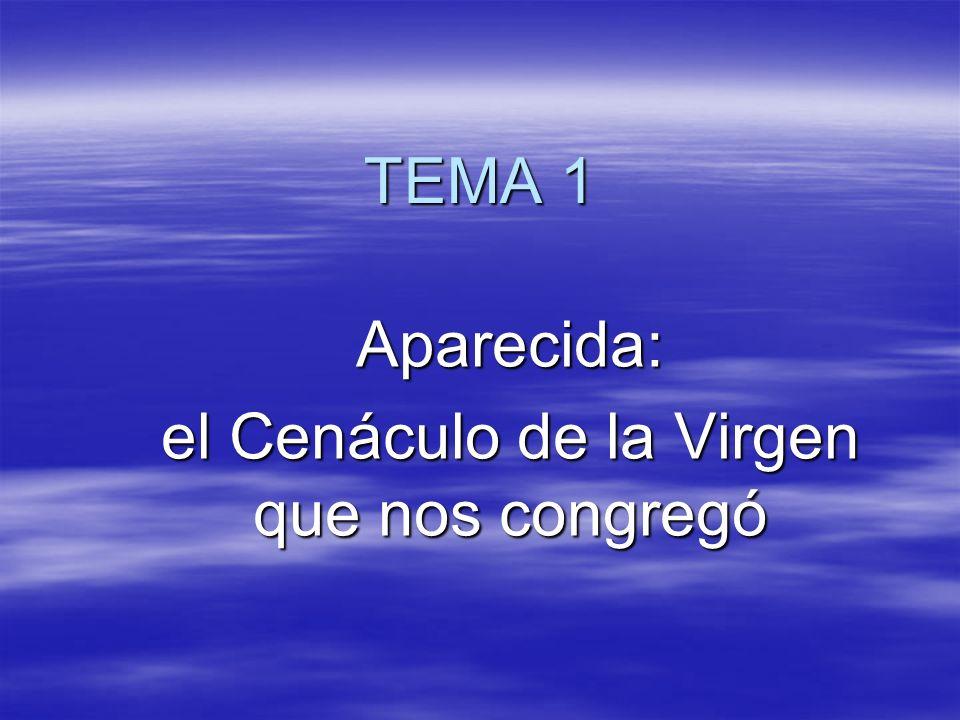 TEMA 1 Aparecida: el Cenáculo de la Virgen que nos congregó