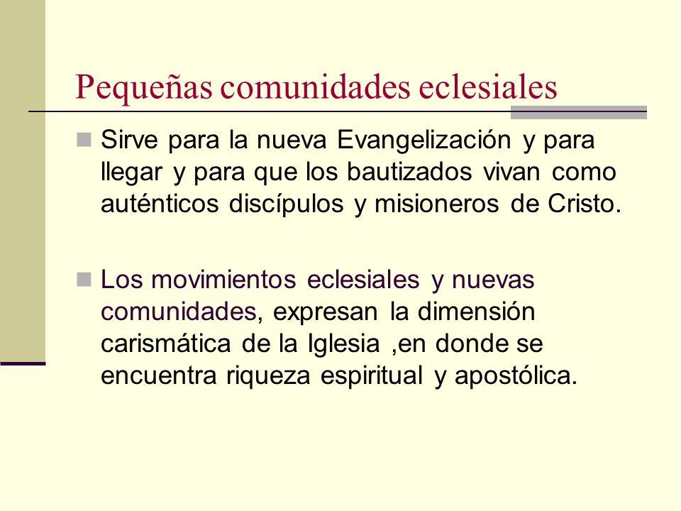 Pequeñas comunidades eclesiales Sirve para la nueva Evangelización y para llegar y para que los bautizados vivan como auténticos discípulos y misioner