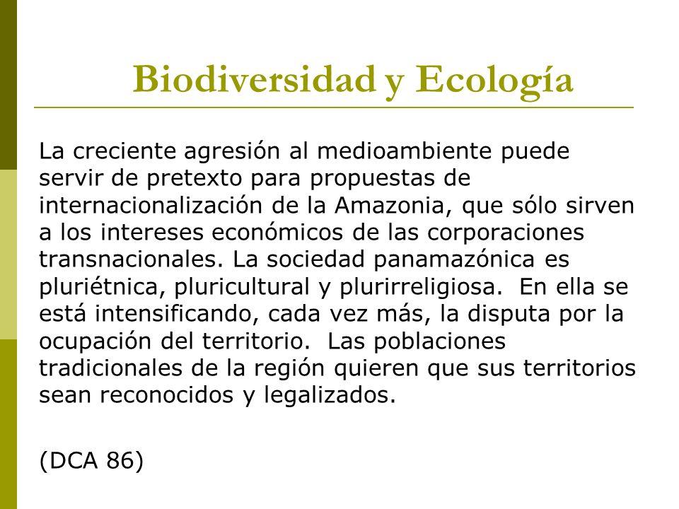 La creciente agresión al medioambiente puede servir de pretexto para propuestas de internacionalización de la Amazonia, que sólo sirven a los interese