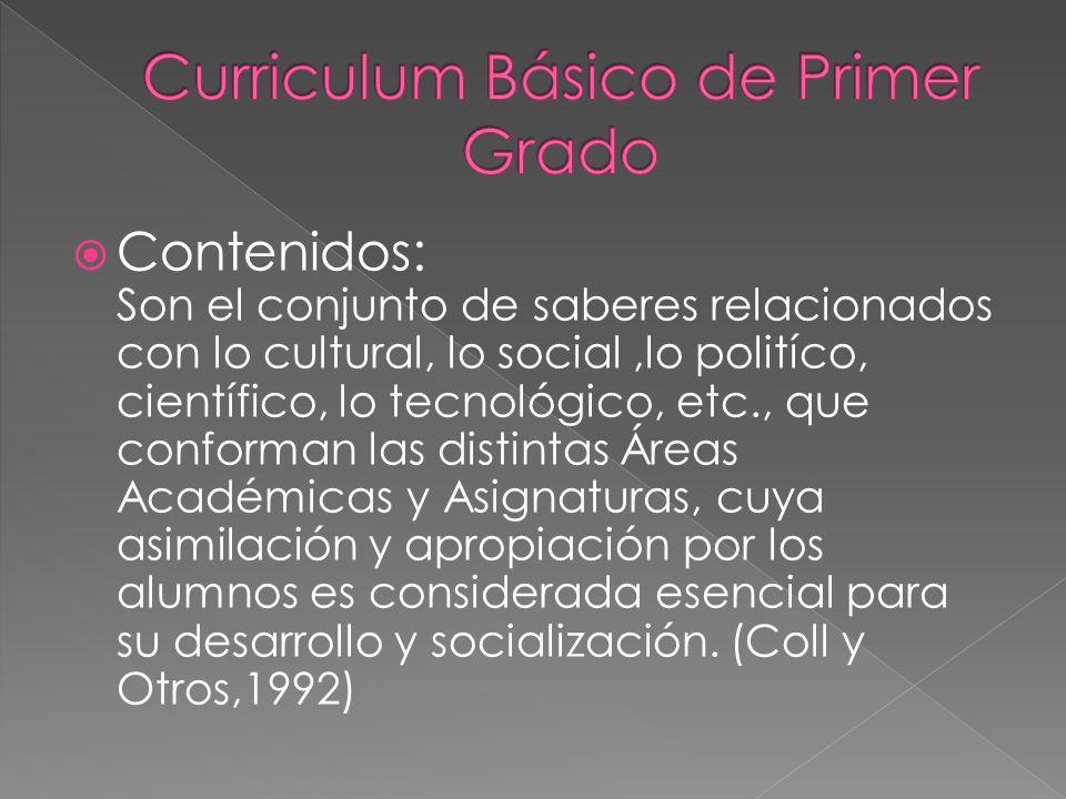 Contenidos Conceptuales, se refieren al conocimiento que tenemos acerca de las cosas, datos, hechos, conceptos, principios y leyes que se expresan con un conocimiento verbal.