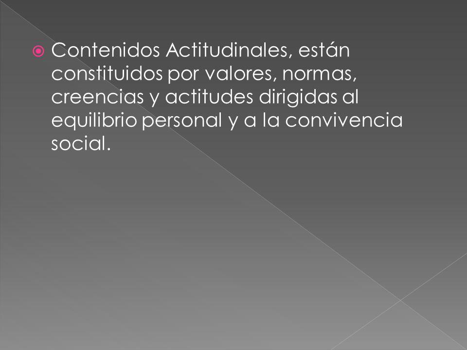 Estos bloques constituyen un elemento organizador de los contenidos en las distintas áreas académicas, guardan estrecha relación con lo planteado en los objetivos de etapa o área.