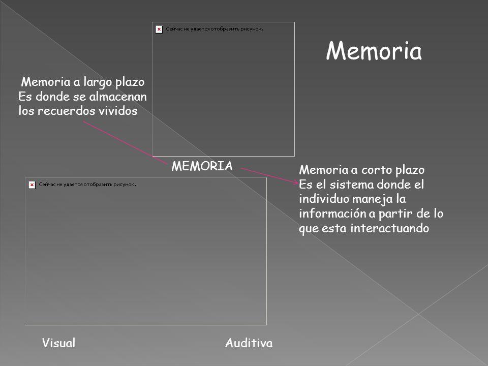 MEMORIA Memoria a largo plazo Es donde se almacenan los recuerdos vividos Memoria a corto plazo Es el sistema donde el individuo maneja la información a partir de lo que esta interactuando Visual Auditiva Memoria