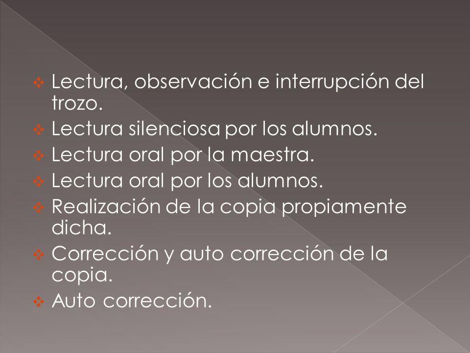 Lectura, observación e interrupción del trozo. Lectura silenciosa por los alumnos. Lectura oral por la maestra. Lectura oral por los alumnos. Realizac