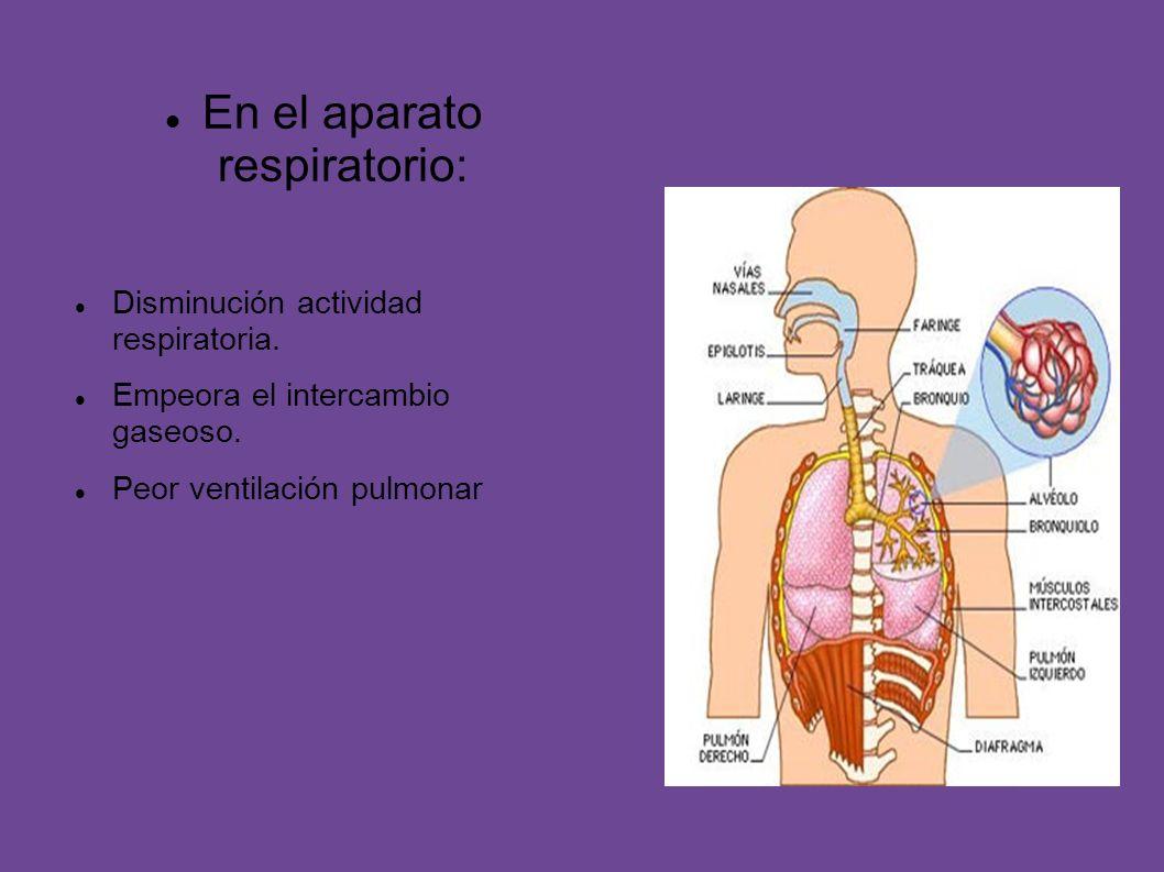 En el aparato respiratorio: Disminución actividad respiratoria. Empeora el intercambio gaseoso. Peor ventilación pulmonar