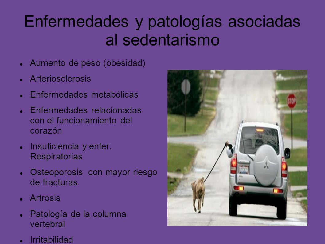 Enfermedades y patologías asociadas al sedentarismo Aumento de peso (obesidad) Arteriosclerosis Enfermedades metabólicas Enfermedades relacionadas con