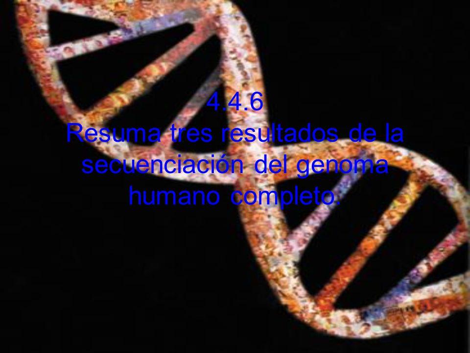 ¿Qué es el genoma.
