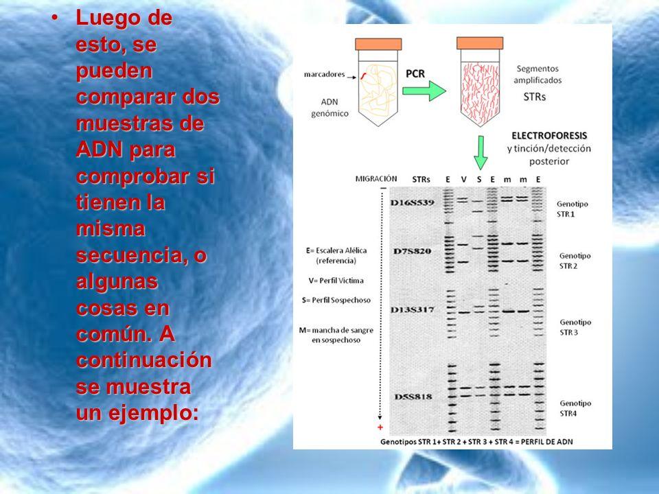 Como se puede ver en el ejemplo mostrado anteriormente, el analisis de ADN puede ser utilizado para investigaciones forenses.