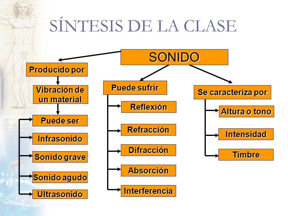 SÍNTESIS DE LA CLASE SONIDO Reflexión Puede sufrir Refracción Difracción Absorción Interferencia Altura o tono Se caracteriza por Intensidad Timbre Vi