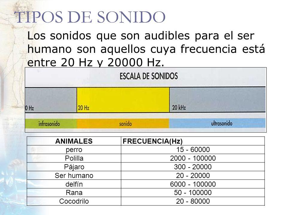 TIPOS DE SONIDO Los sonidos que son audibles para el ser humano son aquellos cuya frecuencia está entre 20 Hz y 20000 Hz. ANIMALESFRECUENCIA(Hz) perro
