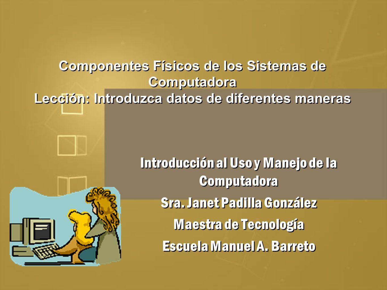 Componentes Físicos de los Sistemas de Computadora Lección: Introduzca datos de diferentes maneras Introducción al Uso y Manejo de la Computadora Sra.