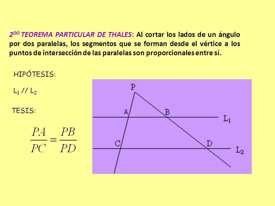 2 DO TEOREMA PARTICULAR DE THALES: Al cortar los lados de un ángulo por dos paralelas, los segmentos que se forman desde el vértice a los puntos de in