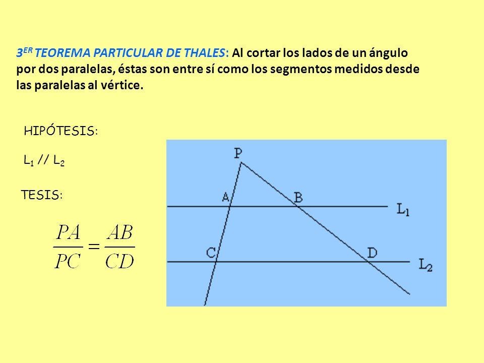 3 ER TEOREMA PARTICULAR DE THALES: Al cortar los lados de un ángulo por dos paralelas, éstas son entre sí como los segmentos medidos desde las paralel