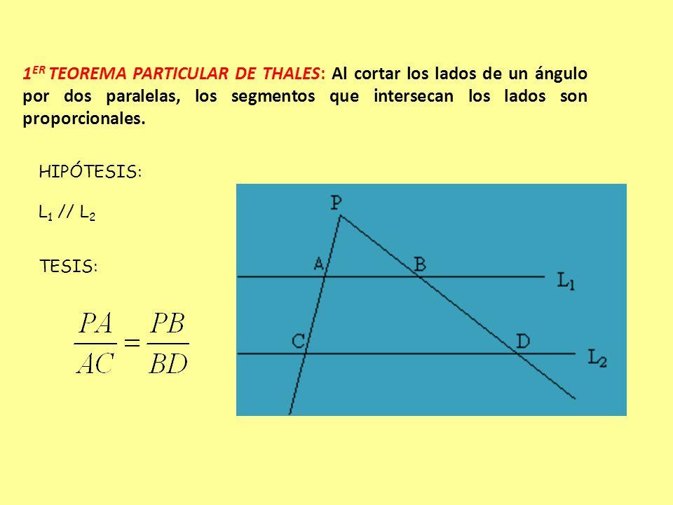 L1L1 L2L2 L3L3 T S 8 24 x 15 EJEMPLO 1: En la figura L 1 // L 2 // L 3, T y S transversales, calcula la medida del trazo x Ordenamos los datos en la proporción, de acuerdo al teorema de Thales Es decir: 8 24 = 15 Y resolvemos la proporción 24 x = 8 15 X =8 15 24 X = 5 x