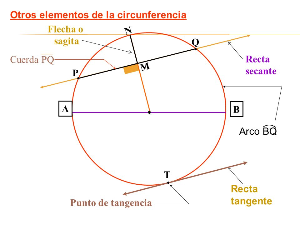 Otros elementos de la circunferencia A B M N Recta tangente Recta secante Flecha o sagita T Punto de tangencia Q P Arco BQ Cuerda PQ
