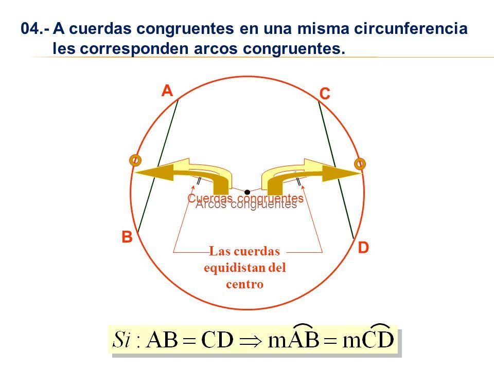 04.- A cuerdas congruentes en una misma circunferencia les corresponden arcos congruentes. A B C D Cuerdas congruentesArcos congruentes Las cuerdas eq