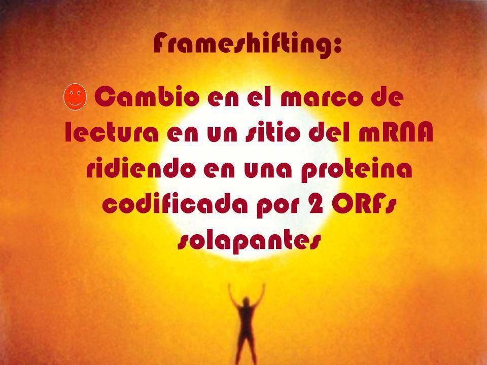 Cambio en el marco de lectura en un sitio del mRNA ridiendo en una proteina codificada por 2 ORFs solapantes Frameshifting: