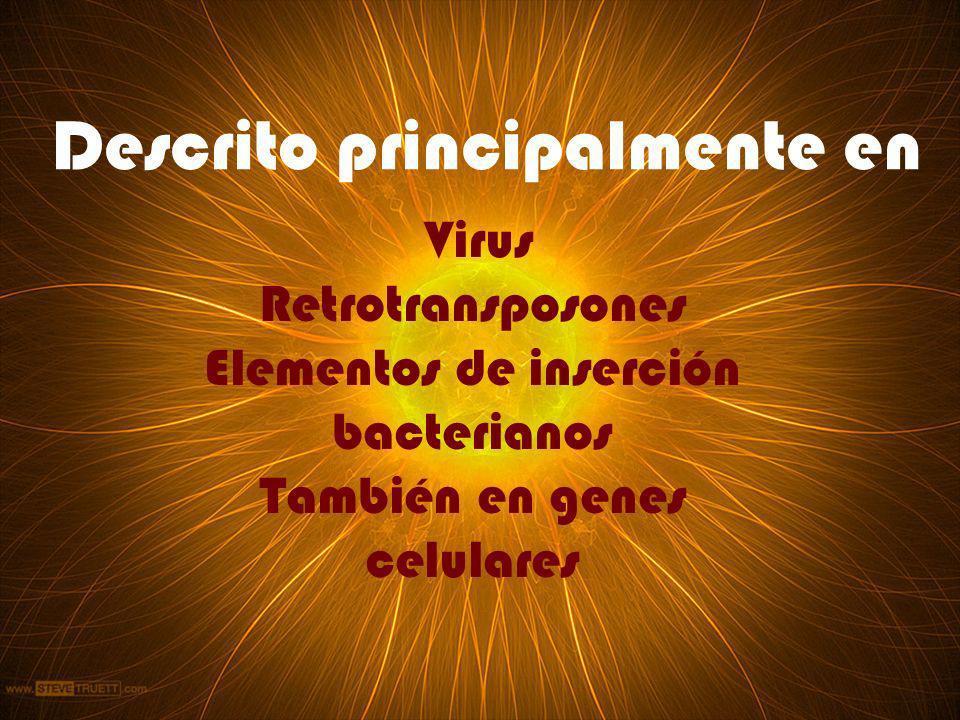 Descrito principalmente en Virus Retrotransposones Elementos de inserción bacterianos También en genes celulares