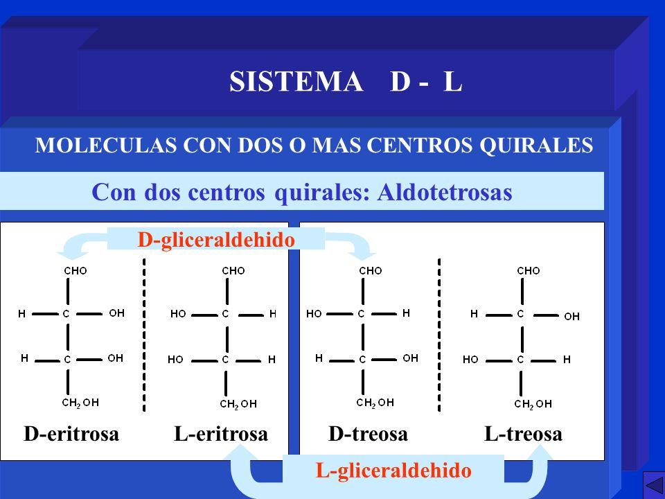 SISTEMA D - L Con dos centros quirales: Aldotetrosas MOLECULAS CON DOS O MAS CENTROS QUIRALES L-gliceraldehido D-eritrosaL-eritrosaD-treosaL-treosa D-