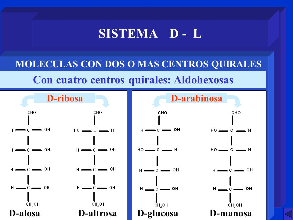 SISTEMA D - L Con cuatro centros quirales: Aldohexosas MOLECULAS CON DOS O MAS CENTROS QUIRALES D-alosaD-altrosaD-glucosaD-manosa D-ribosaD-arabinosa