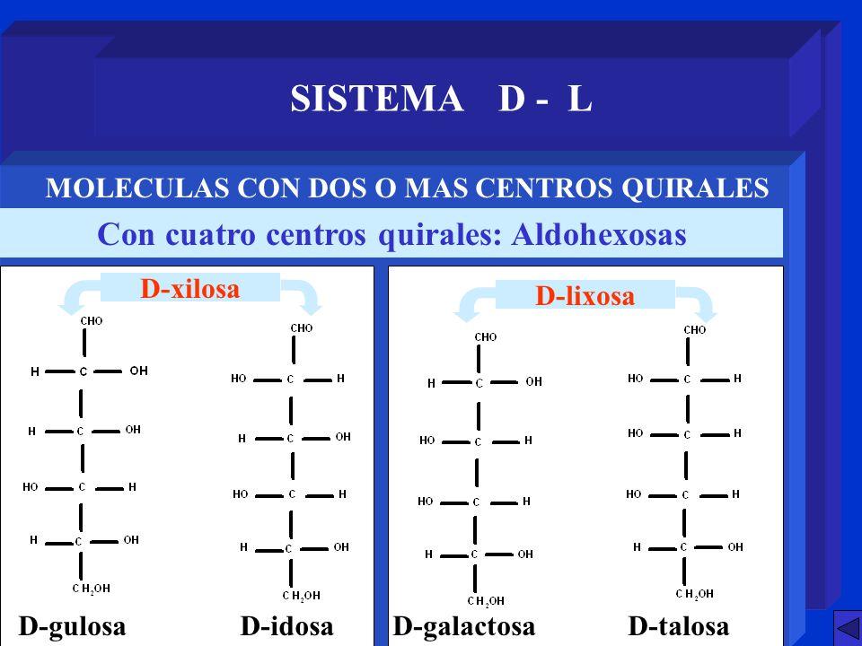 SISTEMA D - L Con cuatro centros quirales: Aldohexosas MOLECULAS CON DOS O MAS CENTROS QUIRALES D-gulosaD-idosaD-galactosaD-talosa D-xilosa D-lixosa