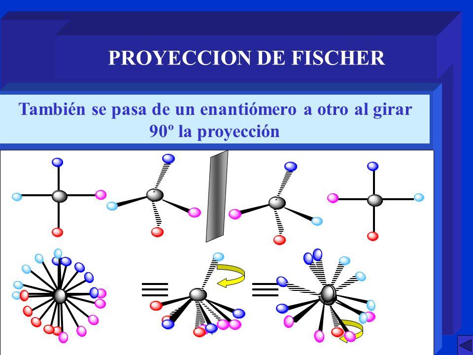 SISTEMA D - L Con dos centros quirales: Aldotetrosas MOLECULAS CON DOS O MAS CENTROS QUIRALES DIASTEROISOMEROS D-eritrosaL-eritrosaD-treosaL-treosa Enantiómeros