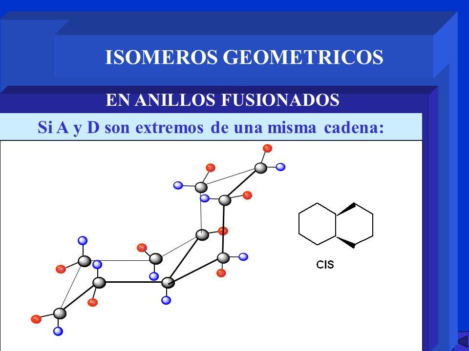 ISOMEROS GEOMETRICOS EN ANILLOS FUSIONADOS Si A y D son extremos de una misma cadena: