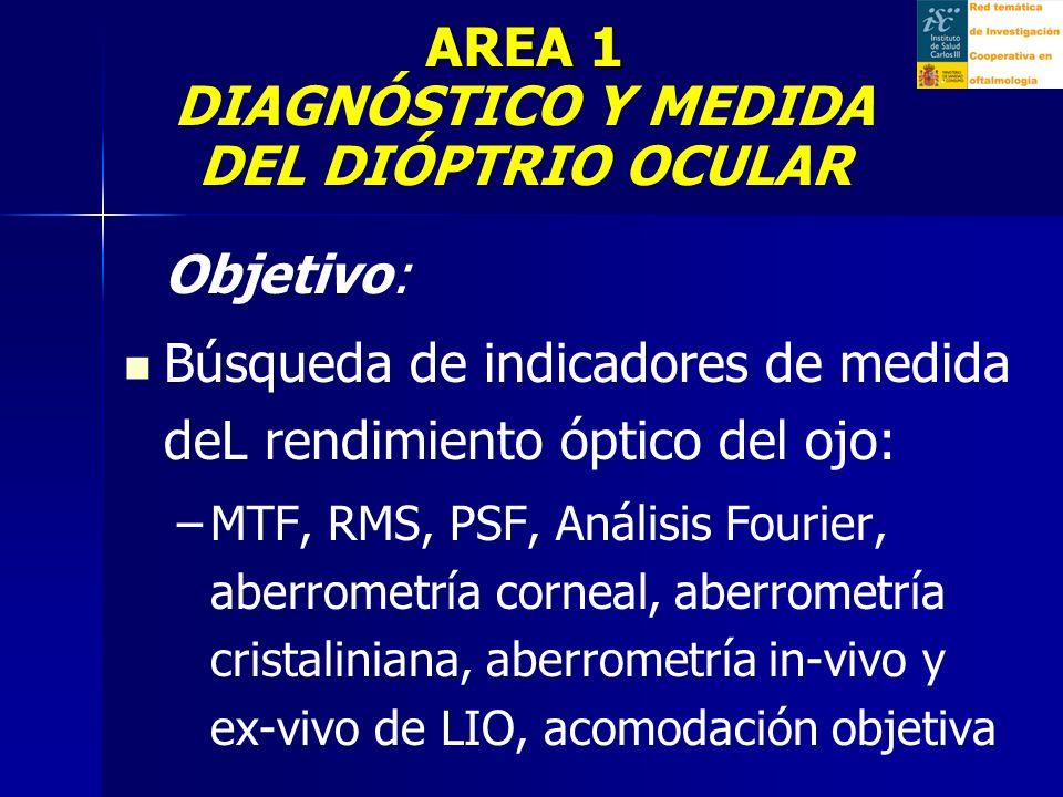 Objetivo: Búsqueda de indicadores de medida deL rendimiento óptico del ojo: – –MTF, RMS, PSF, Análisis Fourier, aberrometría corneal, aberrometría cristaliniana, aberrometría in-vivo y ex-vivo de LIO, acomodación objetiva AREA 1 AREA 1 DIAGNÓSTICO Y MEDIDA DEL DIÓPTRIO OCULAR.