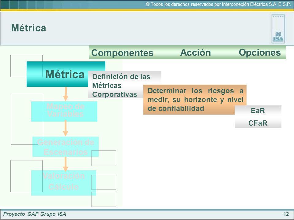 12 © Todos los derechos reservados por Interconexión Eléctrica S.A. E.S.P. Proyecto GAP Grupo ISA Métrica Componentes AcciónOpciones Métrica Mapeo de