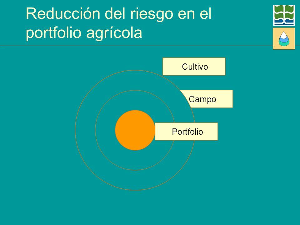 Cultivo Campo Reducción del riesgo en el portfolio agrícola Portfolio