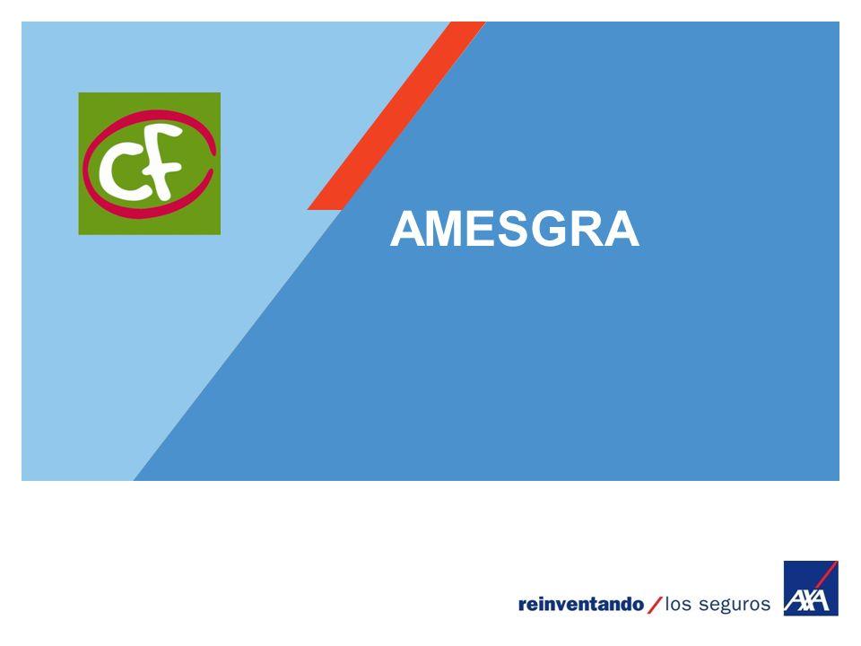 Encombrement maximum du logotype depuis le bord inférieur droit de la page (logo placé à 1/3X du bord; X = logotype) AMESGRA