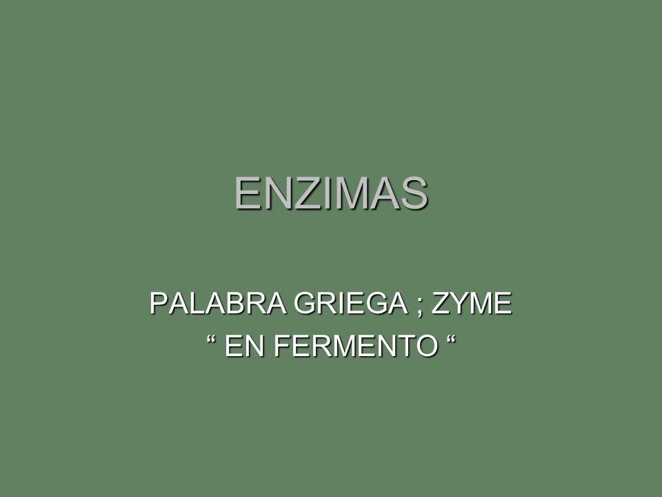 ENZIMAS PALABRA GRIEGA ; ZYME EN FERMENTO EN FERMENTO