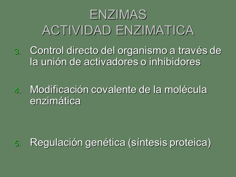 ENZIMAS ACTIVIDAD ENZIMATICA 3. Control directo del organismo a través de la unión de activadores o inhibidores 4. Modificación covalente de la molécu
