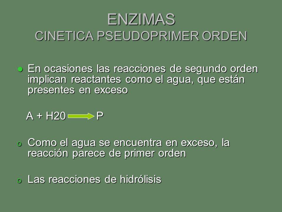 ENZIMAS CINETICA PSEUDOPRIMER ORDEN En ocasiones las reacciones de segundo orden implican reactantes como el agua, que están presentes en exceso En oc