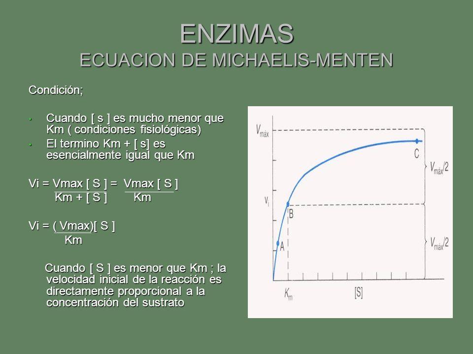 ENZIMAS ECUACION DE MICHAELIS-MENTEN Condición; Cuando [ s ] es mucho menor que Km ( condiciones fisiológicas) Cuando [ s ] es mucho menor que Km ( co