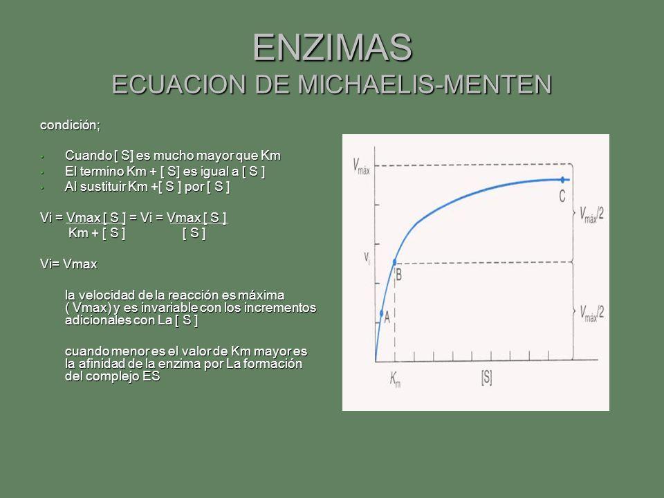 ENZIMAS ECUACION DE MICHAELIS-MENTEN condición; Cuando [ S] es mucho mayor que Km Cuando [ S] es mucho mayor que Km El termino Km + [ S] es igual a [