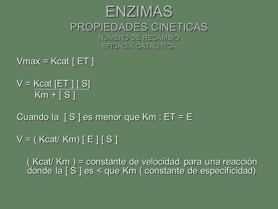 ENZIMAS PROPIEDADES CINETICAS NUMERO DE RECAMBIO EFICACIA CATALITICA Vmax = Kcat [ ET ] V = Kcat [ET ] [ S] Km + [ S ] Km + [ S ] Cuando la [ S ] es m