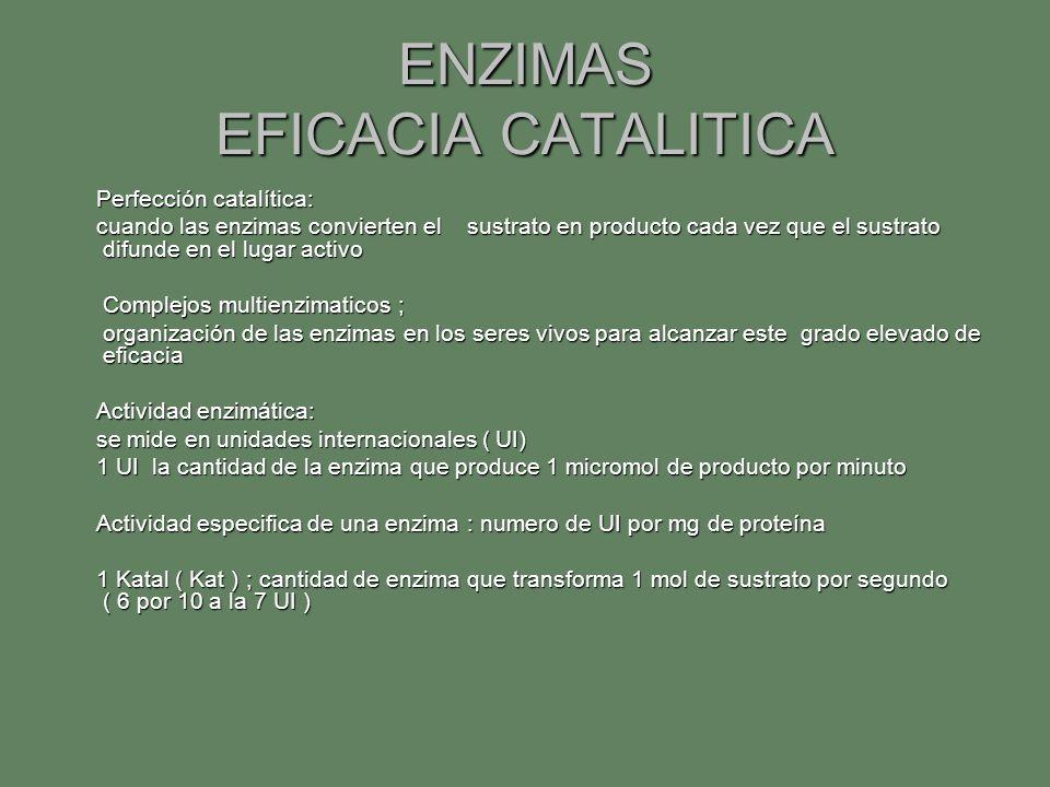 ENZIMAS EFICACIA CATALITICA Perfección catalítica: Perfección catalítica: cuando las enzimas convierten el sustrato en producto cada vez que el sustra