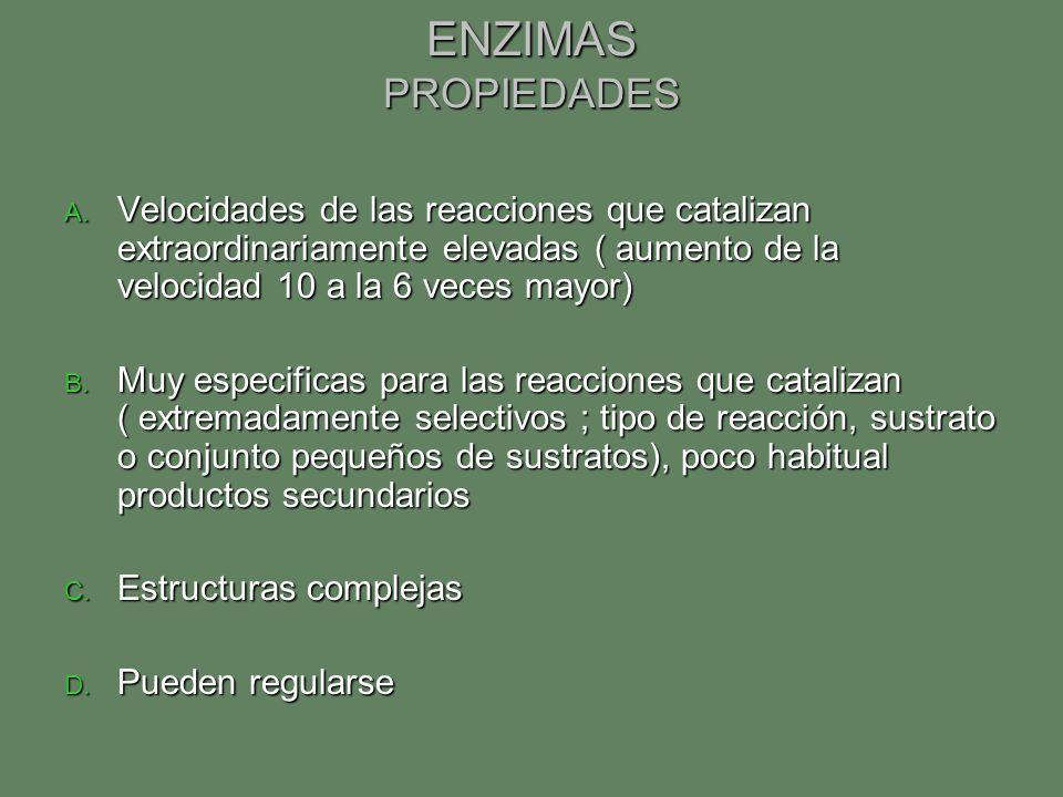 ENZIMAS PROPIEDADES A. Velocidades de las reacciones que catalizan extraordinariamente elevadas ( aumento de la velocidad 10 a la 6 veces mayor) B. Mu