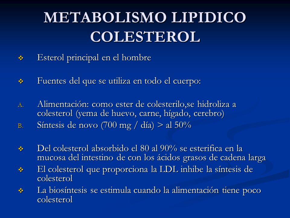 METABOLISMO LIPIDICO SINTESIS DE COLESTEROL REGULACION se ejerce cerca del inicio de la vía en el paso de la HMG-CoA reductasa se ejerce cerca del inicio de la vía en el paso de la HMG-CoA reductasa El mevalonato, el producto inmediato de la vía y el colesterol el producto principal inhiben a la HMG-CoA reductasa en el hígado El mevalonato, el producto inmediato de la vía y el colesterol el producto principal inhiben a la HMG-CoA reductasa en el hígado La insulina o la hormona tiroidea aumentan la actividad de la reductasa La insulina o la hormona tiroidea aumentan la actividad de la reductasa El gluagón y los glucocorticoides disminuyen la actividad de la HMG-CoA reductasa El gluagón y los glucocorticoides disminuyen la actividad de la HMG-CoA reductasa Variación diurna tanto en la síntesis de colesterol como en la actividad de la reductasa Variación diurna tanto en la síntesis de colesterol como en la actividad de la reductasa Efecto del aumento del colesterol intracelular, disminuye la síntesis de receptores celulares de colesterol Efecto del aumento del colesterol intracelular, disminuye la síntesis de receptores celulares de colesterol