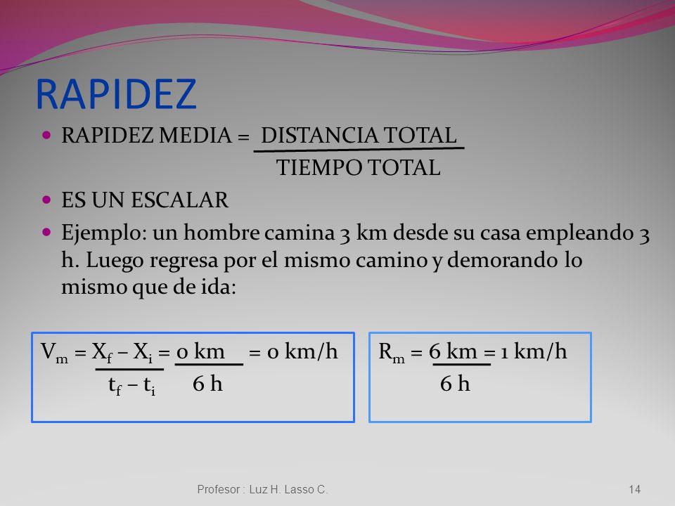 Profesor : Luz H. Lasso C.13