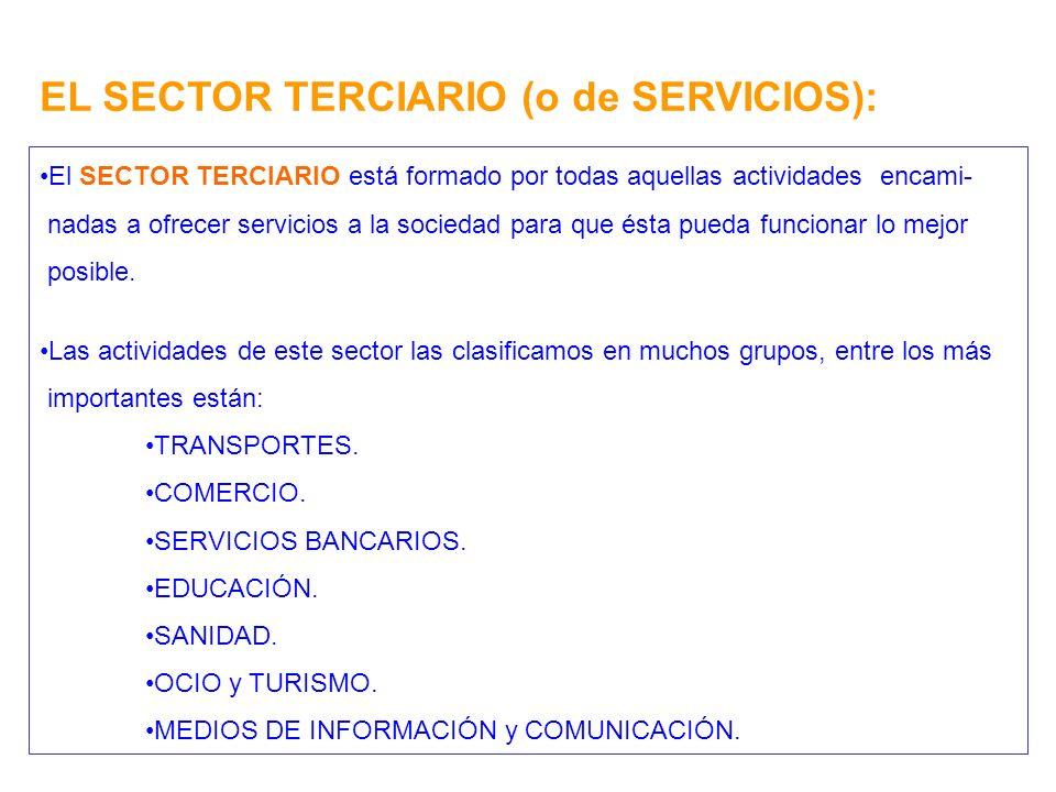 EL SECTOR TERCIARIO (o de SERVICIOS): El SECTOR TERCIARIO está formado por todas aquellas actividades encami- nadas a ofrecer servicios a la sociedad