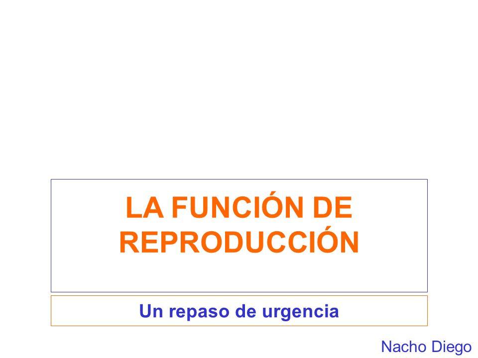 LA FUNCIÓN DE REPRODUCCIÓN Un repaso de urgencia Nacho Diego