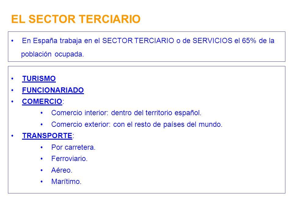 EL SECTOR TERCIARIO En España trabaja en el SECTOR TERCIARIO o de SERVICIOS el 65% de la población ocupada. TURISMO FUNCIONARIADO COMERCIO: Comercio i