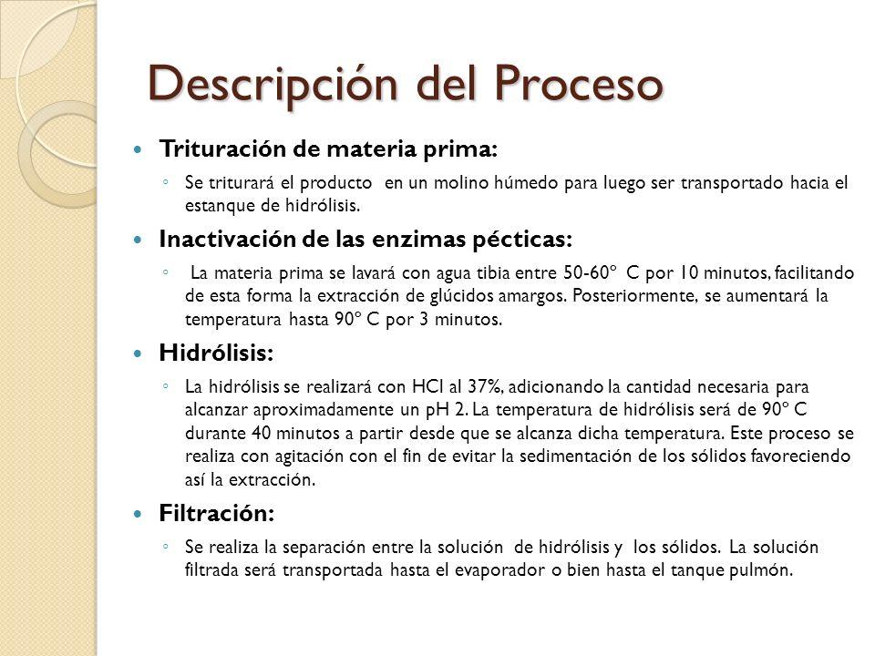 Descripción del Proceso Trituración de materia prima: Se triturará el producto en un molino húmedo para luego ser transportado hacia el estanque de hi