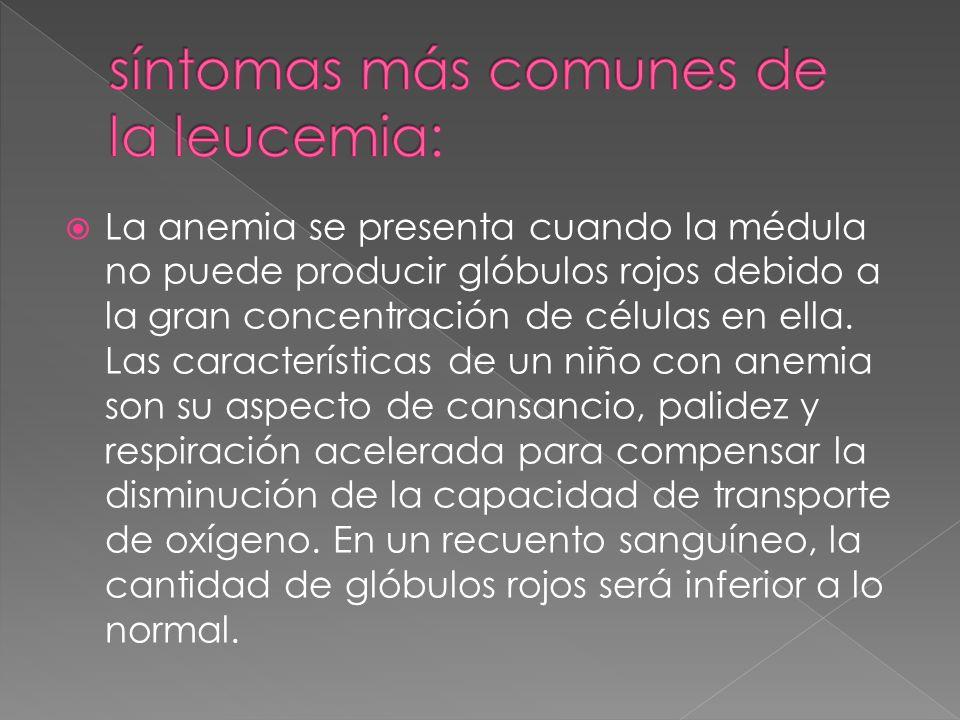 La anemia se presenta cuando la médula no puede producir glóbulos rojos debido a la gran concentración de células en ella. Las características de un n