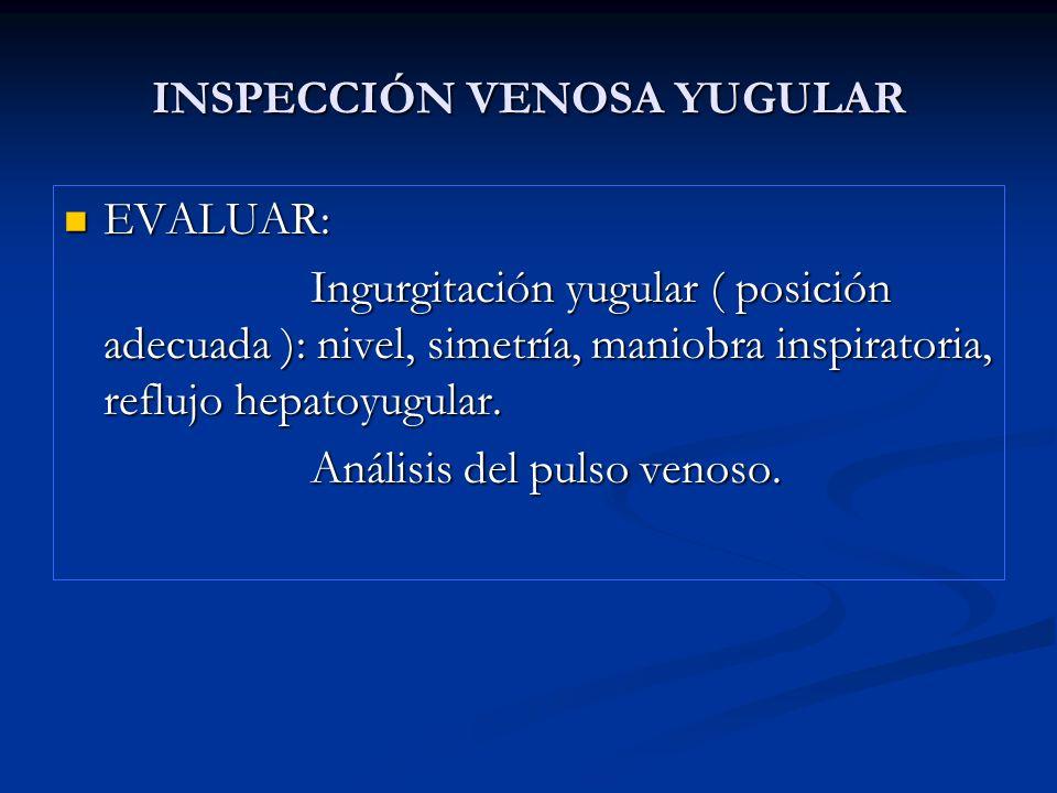 INSPECCIÓN VENOSA YUGULAR EVALUAR: EVALUAR: Ingurgitación yugular ( posición adecuada ): nivel, simetría, maniobra inspiratoria, reflujo hepatoyugular